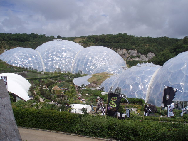 The Eden Project: Sequoias in England